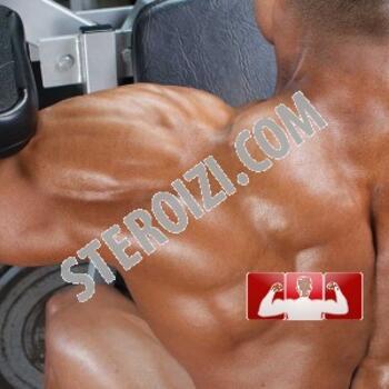 10 WEEKS STEROID CYCLE