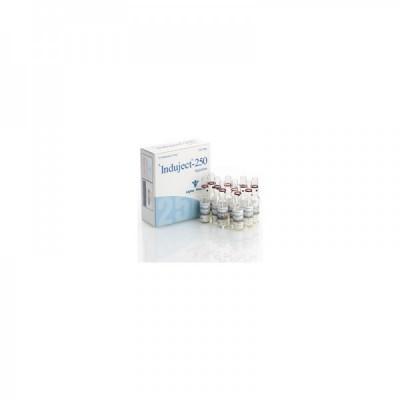 Induject Alpha Pharma ( Sustanon )